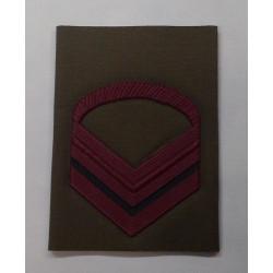 Grado E.I. Caporal Maggiore Scelto