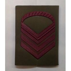 Grado E.I. Caporal Maggiore Capo Scelto