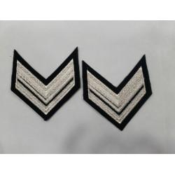 Grado Vice Brigadiere GUS
