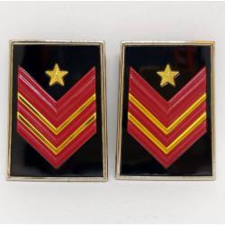 Gradi metallo Appuntato Scelto Qualifica Speciale Carabinieri