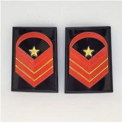 Gradi metallo Caporal Maggiore Capo Scelto Qualifica Speciale Esercito