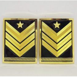 Gradi metallo Sergente Maggiore Capo Qualifica Speciale EI